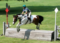 Vermont horse jumping training