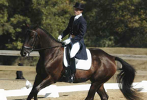 Vermont Dressage training